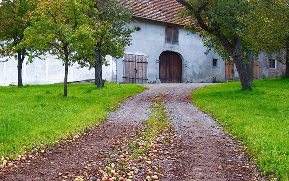 Landwirtschaftsrecht Agrarrecht St. Augustin